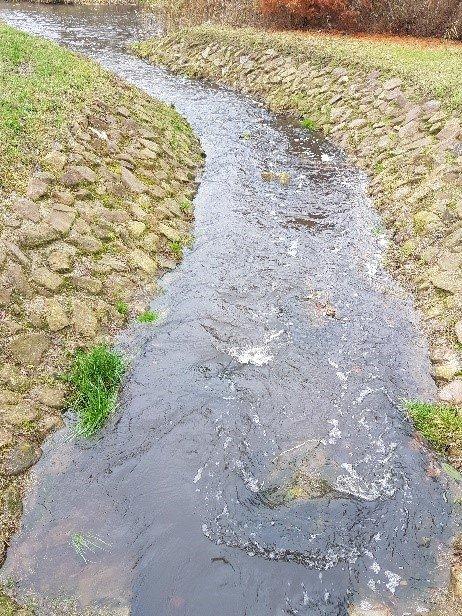waterschap Vechtstromen omloopleiding